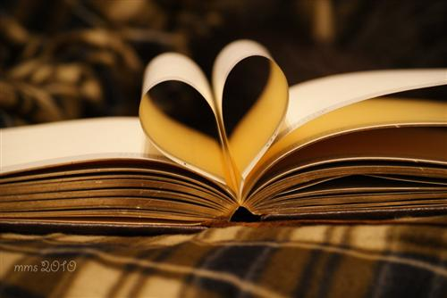 Love Books